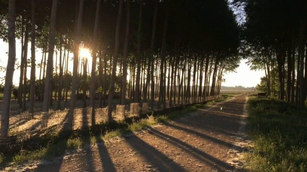 Imágenes espectaculares del Camino de Santiago, hay que vivirlo para poder contemplar algo así