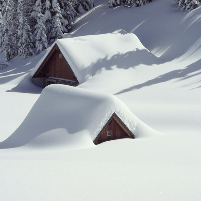 Paisaje de nieve