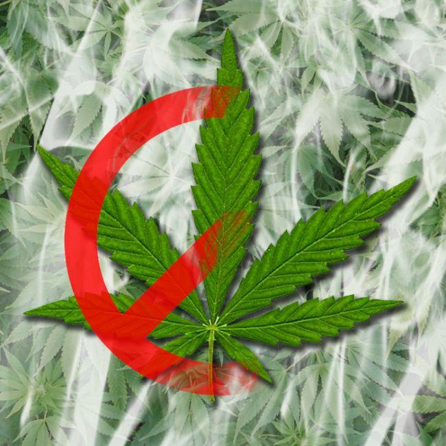 ¿Legalización?