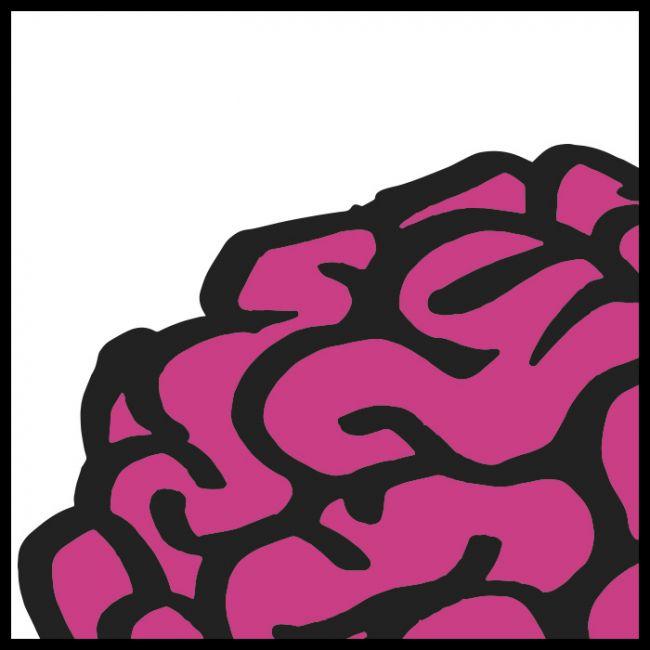 Caza de cerebros